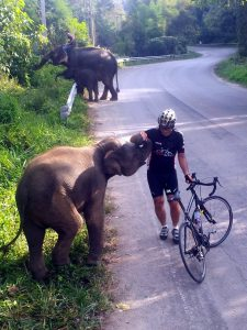 Me and the elephants on a typical Thailand ride.
